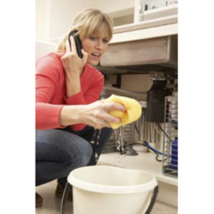 lady with a bucket of water holding a soaked sponge image